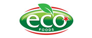 Eco Star International LLC